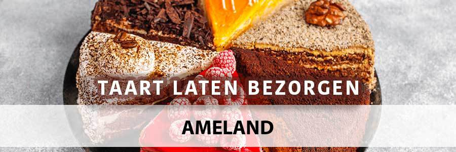 taart-bezorgen-ameland-9164