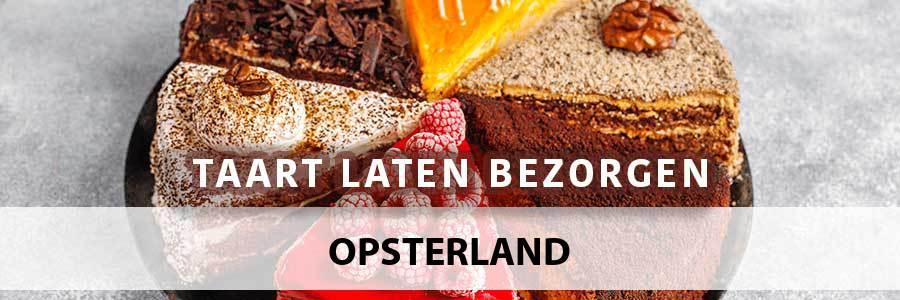 taart-bezorgen-opsterland-9241